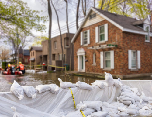 Evaluating Your Flood Insurance Options